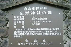広瀬神社の森