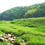 白山命水採水地周辺風景①